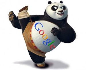 algorithme-google-panda-referencer-positionner-son-site-regles-a-respecter