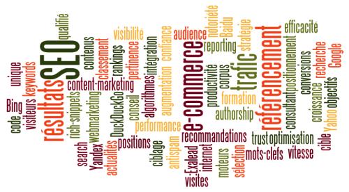 Audit et stratégie en référencement pour site WordPress et PrestaShop