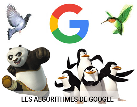 les-differents-algorithmes-de-google