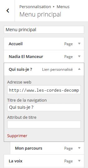 menu-outil-personnalisation-wordpress