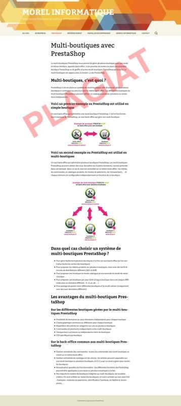 michel-morel-informatique-plagiat-multi-boutique-prestashop