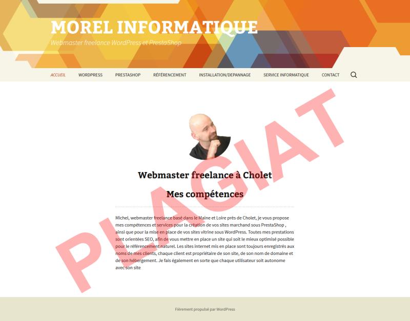 michel-morel-informatique-plagiat-page-accueil