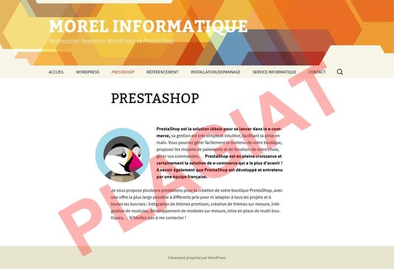 michel-morel-informatique-plagiat-page-presentation-prestashop