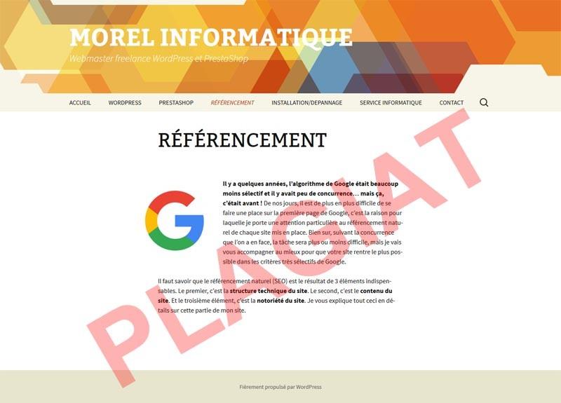 michel-morel-informatique-plagiat-page-presentation-referencement
