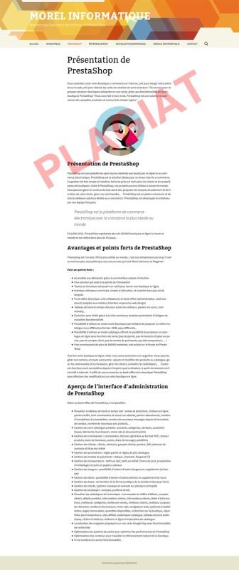 michel-morel-informatique-plagiat-presentation-prestashop