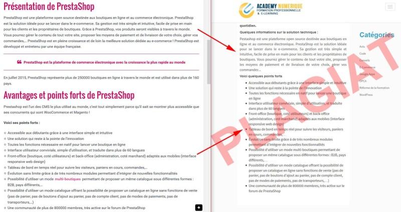 plagiat-de-academy-numerique-formation-professionnelle-elearning