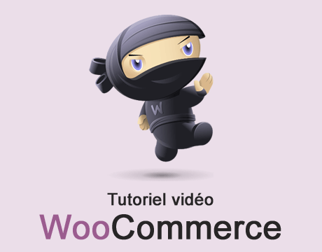 https://www.creanico.fr/wp-content/uploads/tutoriel-video-woocommerce.png